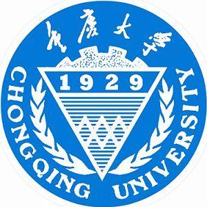 重庆大学考研专业课《917计算机学科专业基础综合》一