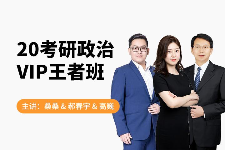 2020考研政治VIP王者班-9班