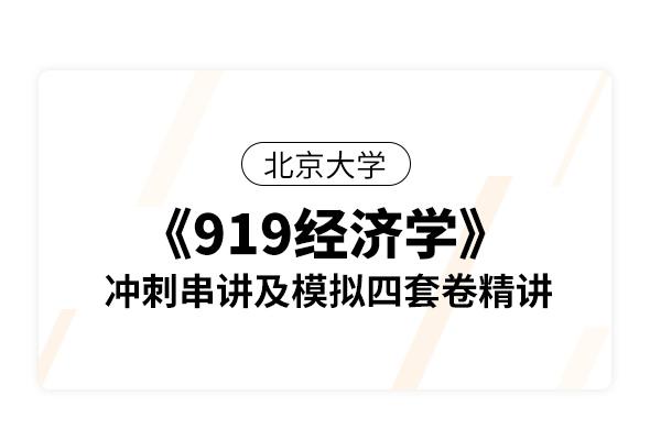 北京大学《919经济学(宏观和微观)》冲刺串讲及模拟四套卷精讲