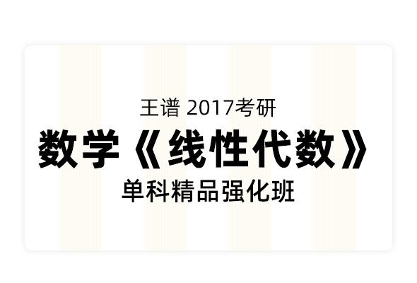 名师王谱2017考研数学《线性代数》单科精品强化班